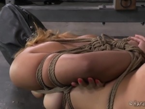 tied and taped up