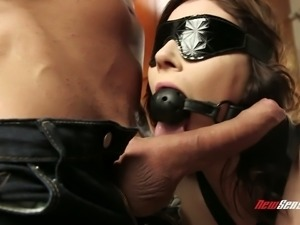 Frisky and hot tranny Jessica Rex loves sucking dick while being blindfolded